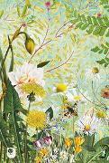 Cover-Bild zu Meine Notizen Frühlingsblumen von Stephani, Tanja (Illustr.)