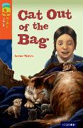 Cover-Bild zu Oxford Reading Tree Treetops Fiction: Level 13 More Pack B: Cat out of the Bag von Yates, Irene