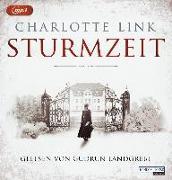 Cover-Bild zu Link, Charlotte: Sturmzeit