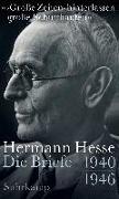 Cover-Bild zu »'Große Zeiten' hinterlassen große Schutthaufen« von Hesse, Hermann