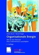 Cover-Bild zu Bruch, Heike: Organisationale Energie
