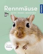 Cover-Bild zu Rennmäuse von Steinkamp, Anja