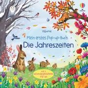 Cover-Bild zu Milbourne, Anna: Mein erstes Pop-up-Buch: Die Jahreszeiten