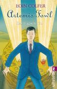 Cover-Bild zu Colfer, Eoin: Artemis Fowl. Das magische Tor
