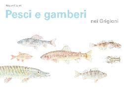 Cover-Bild zu Pesci e gamberi nei Grigioni von Michel, Marcel