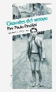 Cover-Bild zu Pasolini, Pier Paolo: Chavales del arroyo (eBook)