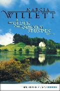 Cover-Bild zu Das Glück der Sonnenstunden (eBook) von Willett, Marcia