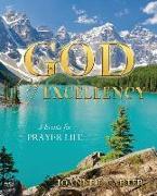 Cover-Bild zu GOD OF EXCELLENCY von Carter, Joanne L.
