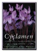 Cover-Bild zu Cyclamen (eBook) von Grey-Wilson, Christopher