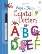 Cover-Bild zu Wipe-Clean Capital Letters von Greenwell, Jessica