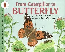 Cover-Bild zu From Caterpillar to Butterfly Big Book von Heiligman, Deborah