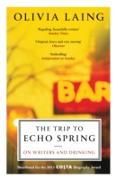 Cover-Bild zu The Trip to Echo Spring (eBook) von Laing, Olivia