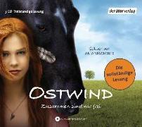 Cover-Bild zu Henn, Kristina Magdalena: Ostwind