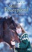 Cover-Bild zu Mein Feuerpferd - Ritt im Nordlicht von Schreiber, Chantal