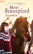 Cover-Bild zu Mein Feuerpferd - Sturmfohlen von Schreiber, Chantal