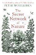 Cover-Bild zu The Secret Network of Nature