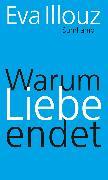 Cover-Bild zu eBook Warum Liebe endet