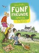 Cover-Bild zu Fünf Freunde JUNIOR - Die Suche nach dem Rennpferd von Blyton, Enid
