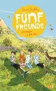 Cover-Bild zu Blyton, Enid: Fünf Freunde als Retter in der Not