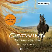 Cover-Bild zu Henn, Kristina Magdalena: Ostwind - Aufbruch nach Ora (Audio Download)