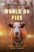 Cover-Bild zu Rowlands, Mark: World on Fire