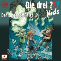 Cover-Bild zu Pfeiffer, Boris: Der singende Geist