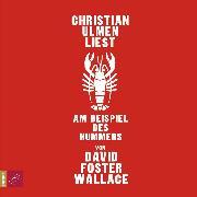 Cover-Bild zu Wallace, David Foster: Am Beispiel des Hummers (Audio Download)