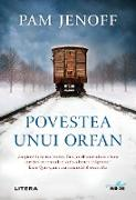 Cover-Bild zu Jenoff, Pam: Povestea Unui Orfan (eBook)