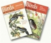 Cover-Bild zu Ridgely, Robert S.: The Birds of Ecuador: Two-Volume Set