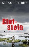 Cover-Bild zu Theorin, Johan: Blutstein