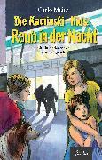 Cover-Bild zu Meier, Carlo: Raub in der Nacht (eBook)