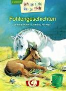 Cover-Bild zu Moser, Annette: Ich für dich, du für mich - Fohlengeschichten