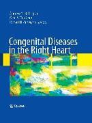 Cover-Bild zu Congenital Diseases in the Right Heart von Redington, Andrew N. (Hrsg.)
