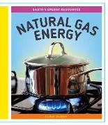 Cover-Bild zu Olson, Elsie: Natural Gas Energy