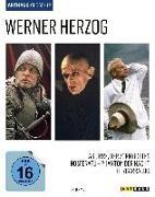 Cover-Bild zu Herzog, Werner: Werner Herzog
