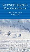 Cover-Bild zu Herzog, Werner: Vom Gehen im Eis