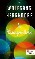 Cover-Bild zu Herrndorf, Wolfgang: In Plüschgewittern (eBook)