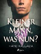Cover-Bild zu Fallada, Hans: Kleiner Mann, was nun? (eBook)