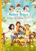 Cover-Bild zu Wolff, Anne: Die Schule der kleinen Ponys - Wen hat hier der Hafer gestochen?