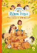 Cover-Bild zu Wolff, Anne: Die Schule der kleinen Ponys - Ein Heuhaufen voller Geheimnisse (eBook)