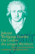 Cover-Bild zu Die Leiden des jungen Werthers von Goethe, Johann Wolfgang