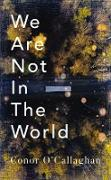 Cover-Bild zu O'Callaghan, Conor: We Are Not in The World (eBook)