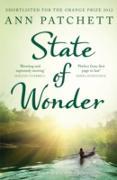 Cover-Bild zu Patchett, Ann: State of Wonder (eBook)