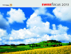 Cover-Bild zu Swiss Focus 2013