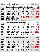 Cover-Bild zu 3-Monatskalender grau 2015