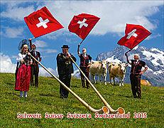 Cover-Bild zu Schweiz - Suisse - Svizzera - Switzerland 2015