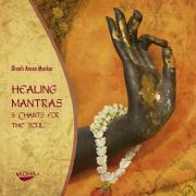 Cover-Bild zu Healing Mantras und Chants for the Soul