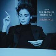 Cover-Bild zu Nightfall