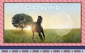 Cover-Bild zu Ostwind - Frühjahr 2019: Briefpapier-Set