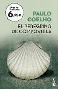 Cover-Bild zu El peregrino de Compostela